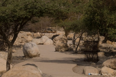 Entrata al parco di Ein Gedi