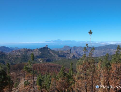 Isola Gran Canaria – entroterra